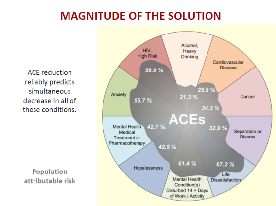 acemagnituteofsolution
